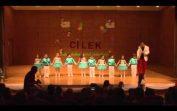 Özel Çilek Anaokulu Yıl Sonu Gösterisi