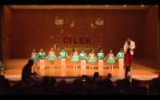 Çilek Anaokulu Yıl Sonu Gösterisi (Full Cd)