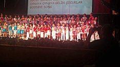 2013 Koro Gösterisi