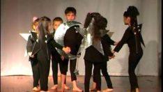 Yıldızlar Rondu Gösterisi 2008