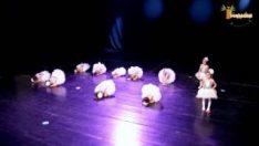 Bale Gösterisi ( 2015 – 2016 ) İpekböceği Anaokulu