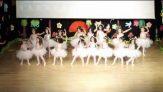 Çocuk Konağı Anaokulu Bale Gösterisi