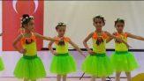 Anaokulu Yıl Sonu Bale Gösterisi