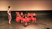 Ateş Böcekleri Dans Gösterisi