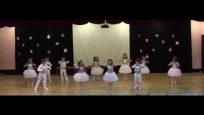 Mustafa Gümüş Anaokulu Modern Dans Gösterisi