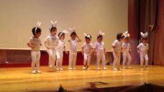 Anaokulu Yıl Sonu Gösterisi