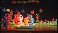 Pamuk Prenses Gösterisi