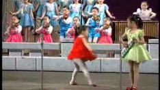 New footage from North Korea of a children's musical performance